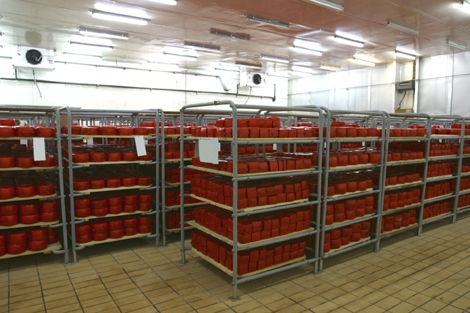 cold storage facility fire protection