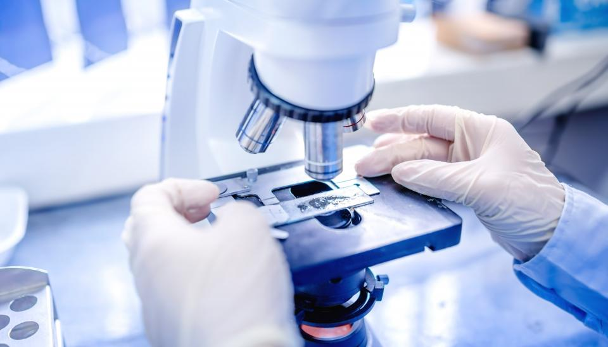 Ahern - Biotechnology